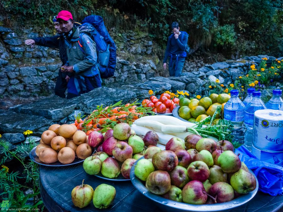 Apples, Pear (Poire), carrot, and Turnip (Navet) that villagers put on the small table in front of their house for sale